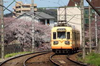 2006-03~.JPG