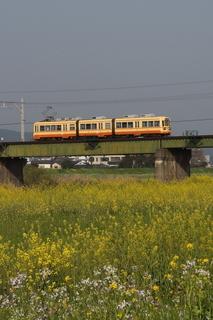 2006-05~.JPG