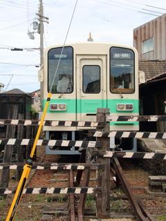 nishigobou17050402~.JPG